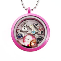 Frozen Floating Locket